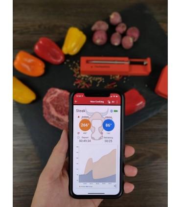 The MeatStick Xtender & Termometer